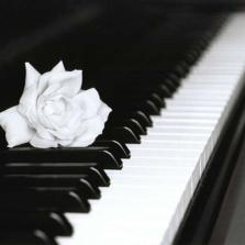 Музыкальная память