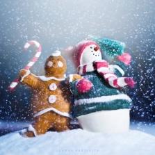 Подарок от Снегурочки