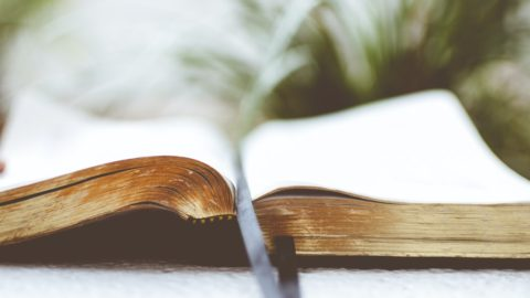Литературный марафон «Читаем вместе»